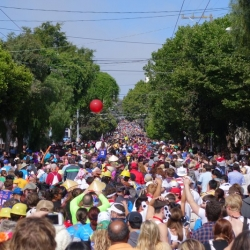 bay-to-breakers-2014-14