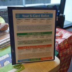 vote-november-2014-san-francisco-4