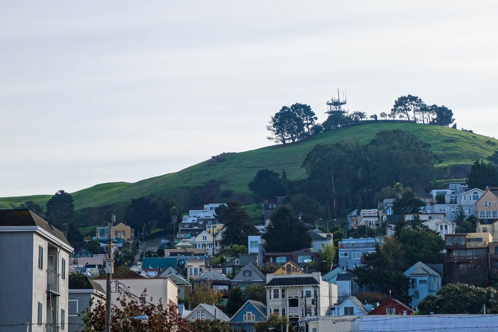 In Pictures:  Bernal Heights Hill Turning Green With Life