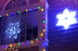 treeside-court-christmas-lights-2014-8