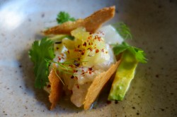octavia-sf-local-halibut-crudo