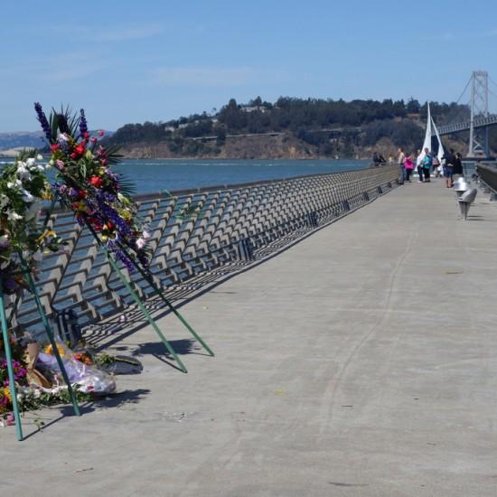 pier-14-kathryn-steinle-tribute