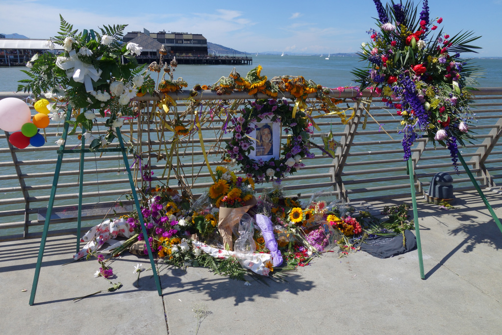 In Pictures – A Tribute To Kathryn Steinle