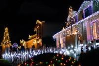 treeside-court-christmas-lights-2015-1