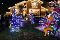 treeside-court-christmas-lights-2015-10