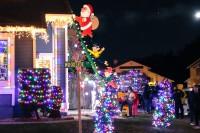 treeside-court-christmas-lights-2015-17