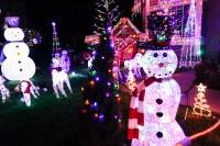 treeside-court-christmas-lights-2015-18