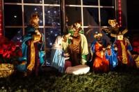 treeside-court-christmas-lights-2015-2
