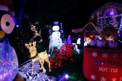 treeside-court-christmas-lights-2015-20-hero