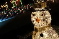 treeside-court-christmas-lights-2015-25