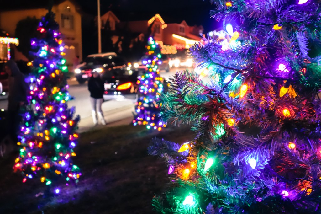 treeside-court-christmas-lights-2015-3-cover