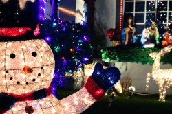 treeside-court-christmas-lights-2015-4-hero