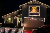 treeside-court-christmas-lights-2015-6