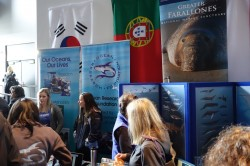 ocean-film-festival-13th-2